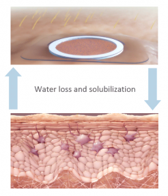 waterloss-solubilization