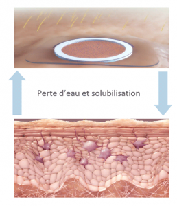 waterloss-solubilization-fr